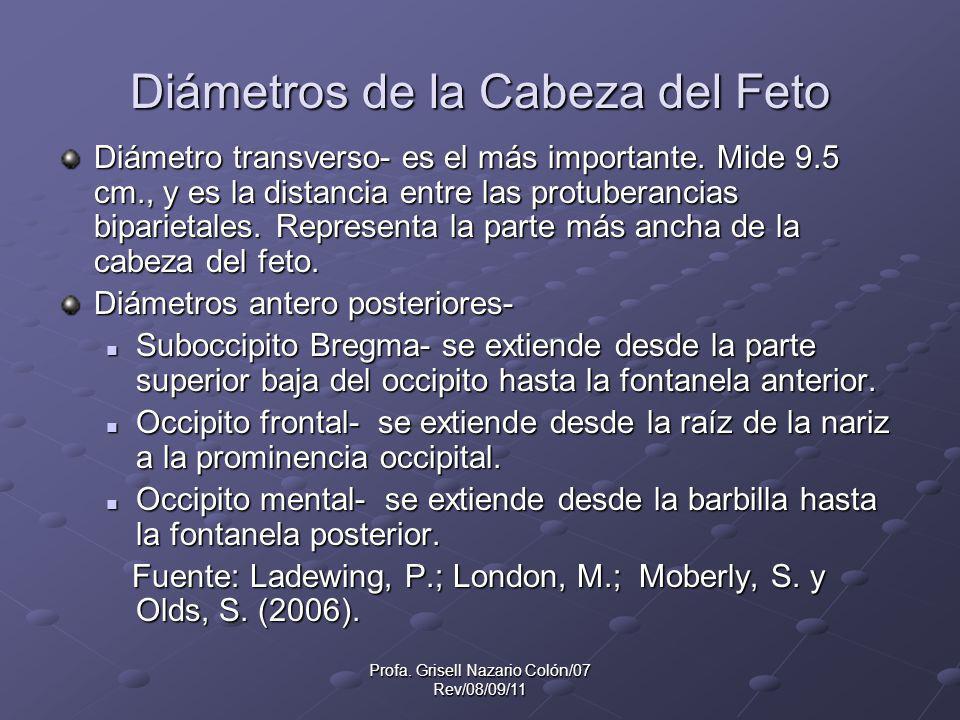 Profa. Grisell Nazario Colón/07 Rev/08/09/11 Diámetros de la Cabeza del Feto Diámetro transverso- es el más importante. Mide 9.5 cm., y es la distanci