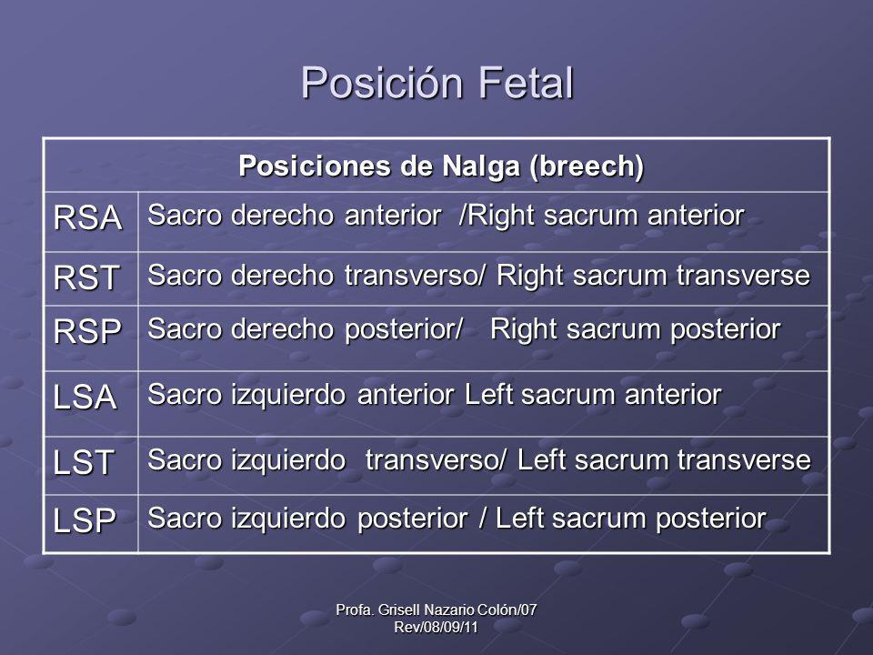 Profa. Grisell Nazario Colón/07 Rev/08/09/11 Posición Fetal Posiciones de Nalga (breech) Posiciones de Nalga (breech) RSA Sacro derecho anterior /Righ