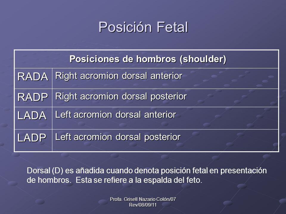 Profa. Grisell Nazario Colón/07 Rev/08/09/11 Posición Fetal Posiciones de hombros (shoulder) Posiciones de hombros (shoulder) RADA Right acromion dors