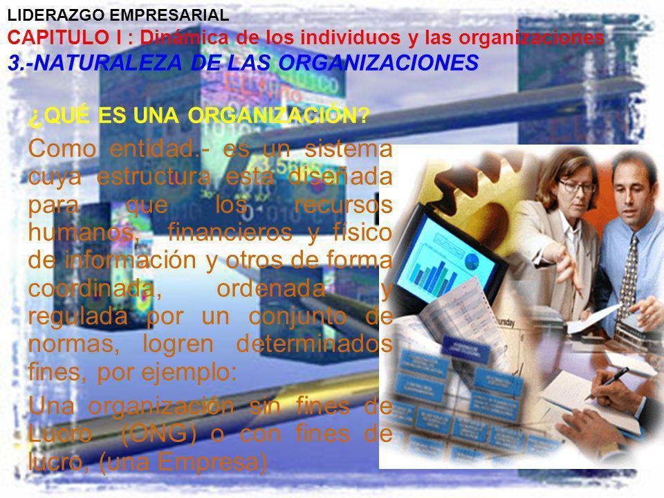 LIDERAZGO EMPRESARIAL CAPITULO I : Dinámica de los individuos y las organizaciones 3.-NATURALEZA DE LAS ORGANIZACIONES ¿ QUÉ ES UNA ORGANIZACIÓN? Como
