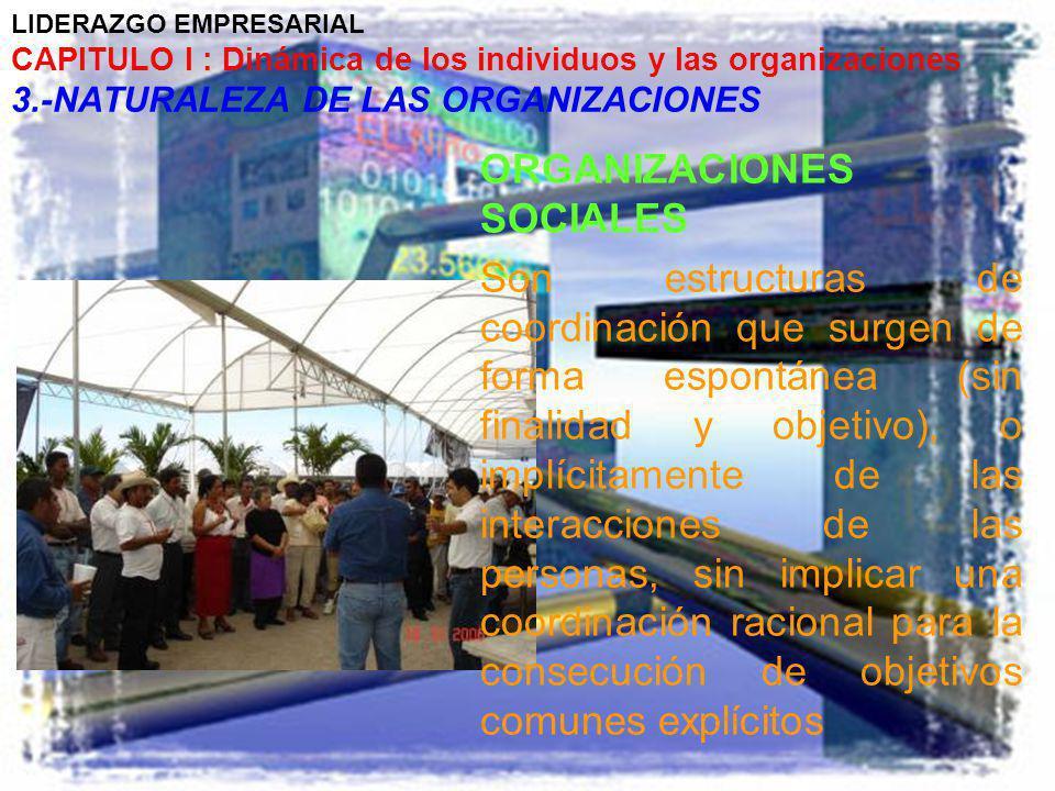 LIDERAZGO EMPRESARIAL CAPITULO I : Dinámica de los individuos y las organizaciones 3.-NATURALEZA DE LAS ORGANIZACIONES ORGANIZACIONES SOCIALES Son est
