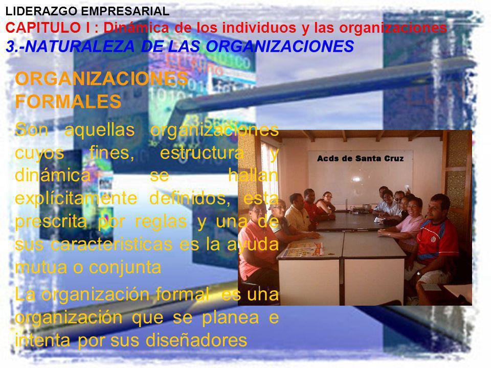 LIDERAZGO EMPRESARIAL CAPITULO I : Dinámica de los individuos y las organizaciones 3.-NATURALEZA DE LAS ORGANIZACIONES ORGANIZACIONES FORMALES Son aqu