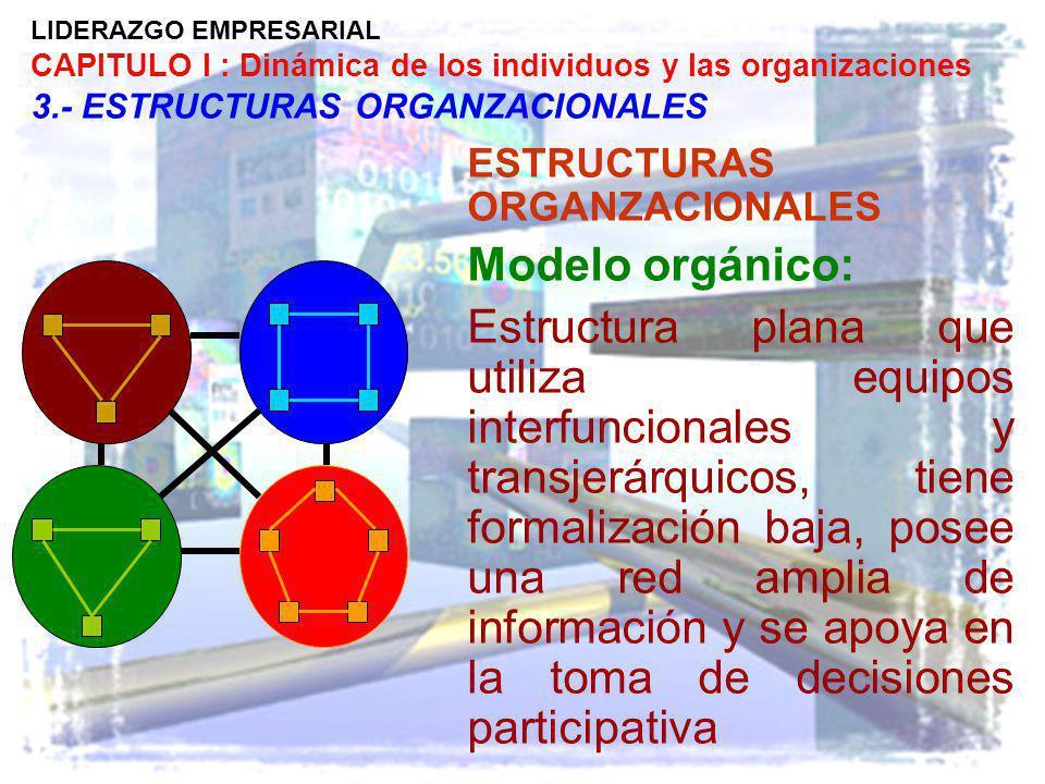 LIDERAZGO EMPRESARIAL CAPITULO I : Dinámica de los individuos y las organizaciones 3.- ESTRUCTURAS ORGANZACIONALES ESTRUCTURAS ORGANZACIONALES Modelo