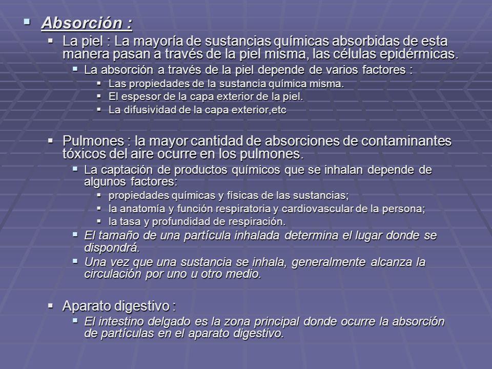Absorción : Absorción : La piel : La mayoría de sustancias químicas absorbidas de esta manera pasan a través de la piel misma, las células epidérmicas.