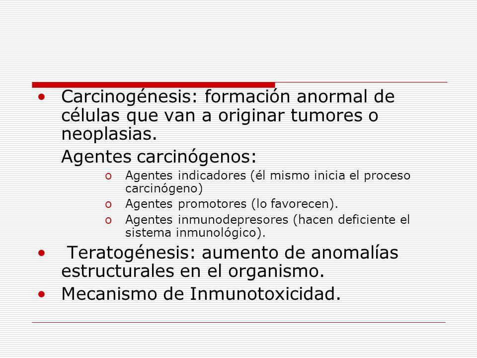 Carcinogénesis: formación anormal de células que van a originar tumores o neoplasias.