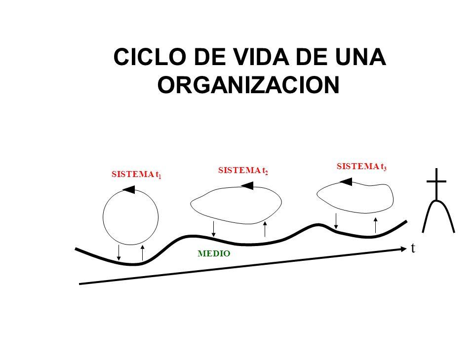 CICLO DE VIDA DE UNA ORGANIZACION t MEDIO SISTEMA t 1 SISTEMA t 2 SISTEMA t 3