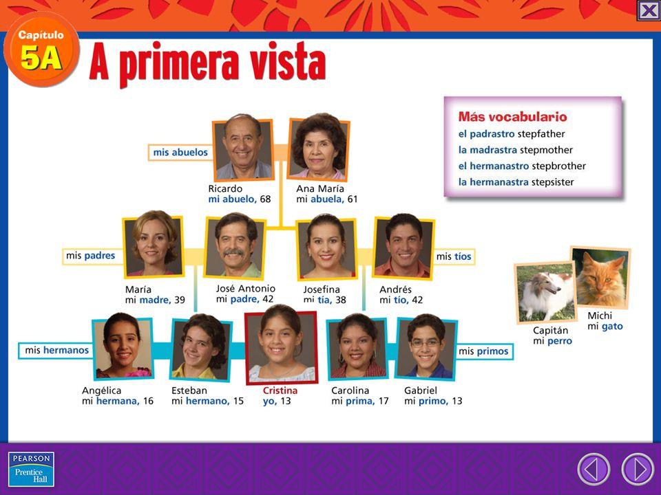 to indicate possession or relationship tener to have tengo tienes tiene tenemos tenéis tienen