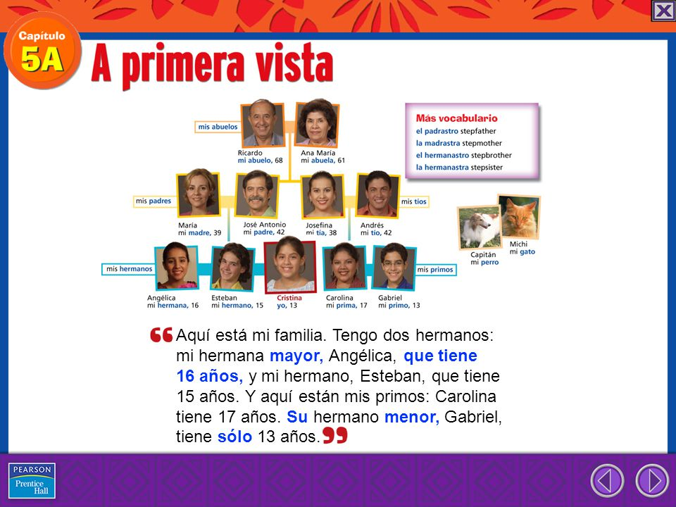to indicate possession or relationship possessive adjectives mi(s) my tu(s) your su(s) your (formal), his, her, its nuestro(s), -a(s) our vuestro(s), -a(s) your (pl.) su(s) your (pl.), their