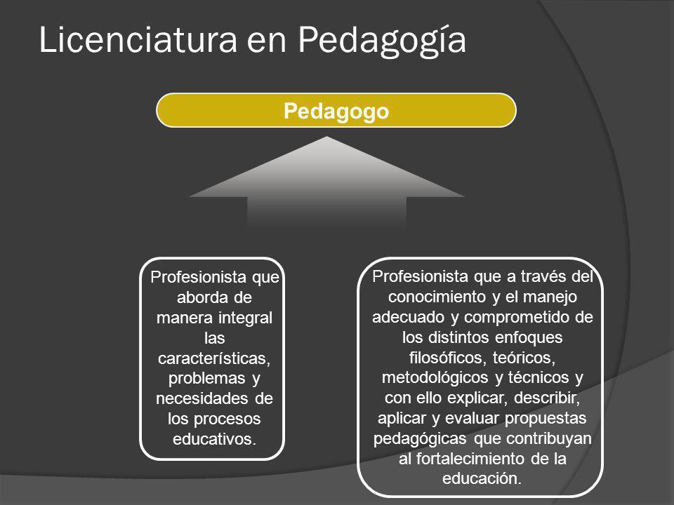 Profesionista que a través del conocimiento y el manejo adecuado y comprometido de los distintos enfoques filosóficos, teóricos, metodológicos y técni
