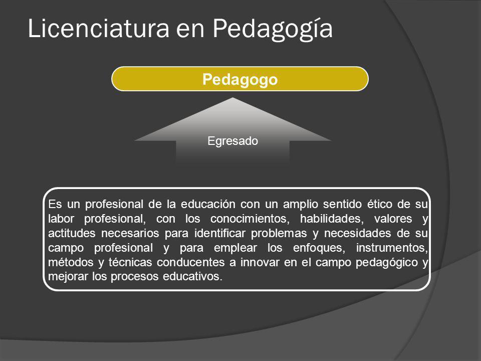 Es un profesional de la educación con un amplio sentido ético de su labor profesional, con los conocimientos, habilidades, valores y actitudes necesar
