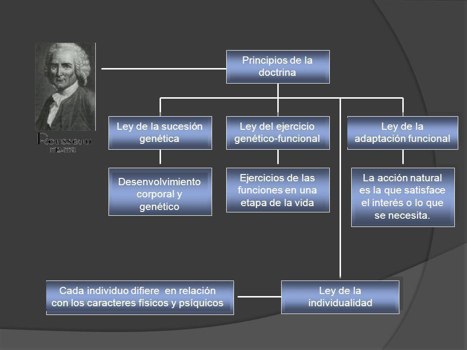 Principios de la doctrina Ley de la sucesión genética Desenvolvimiento corporal y genético Ejercicios de las funciones en una etapa de la vida La acci