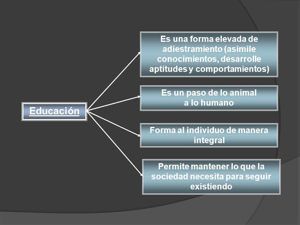 Es una forma elevada de adiestramiento (asimile conocimientos, desarrolle aptitudes y comportamientos) Es un paso de lo animal a lo humano Forma al in