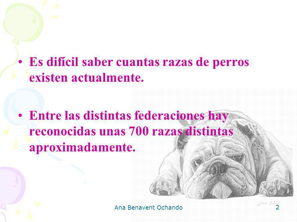 2 Es difícil saber cuantas razas de perros existen actualmente. Entre las distintas federaciones hay reconocidas unas 700 razas distintas aproximadame