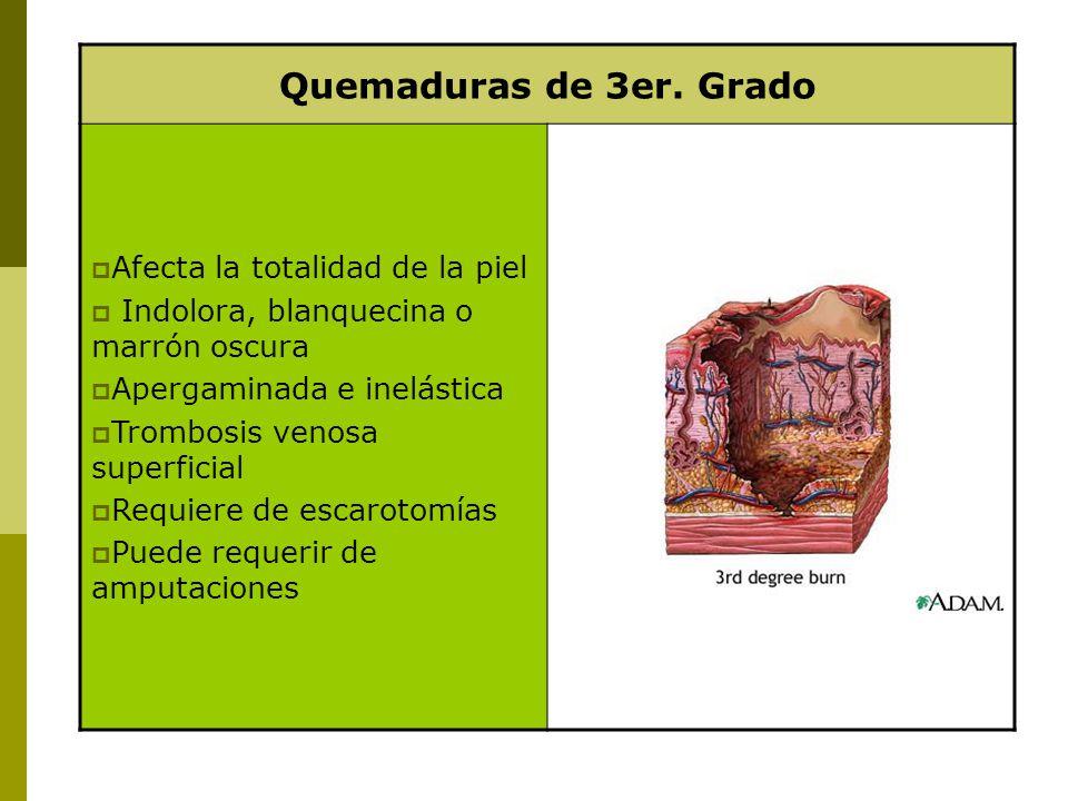 Quemaduras de 3er. Grado Afecta la totalidad de la piel Indolora, blanquecina o marrón oscura Apergaminada e inelástica Trombosis venosa superficial R