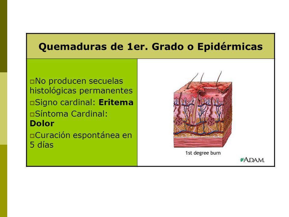 Quemaduras de 1er. Grado o Epidérmicas No producen secuelas histológicas permanentes Signo cardinal: Eritema Síntoma Cardinal: Dolor Curación espontán