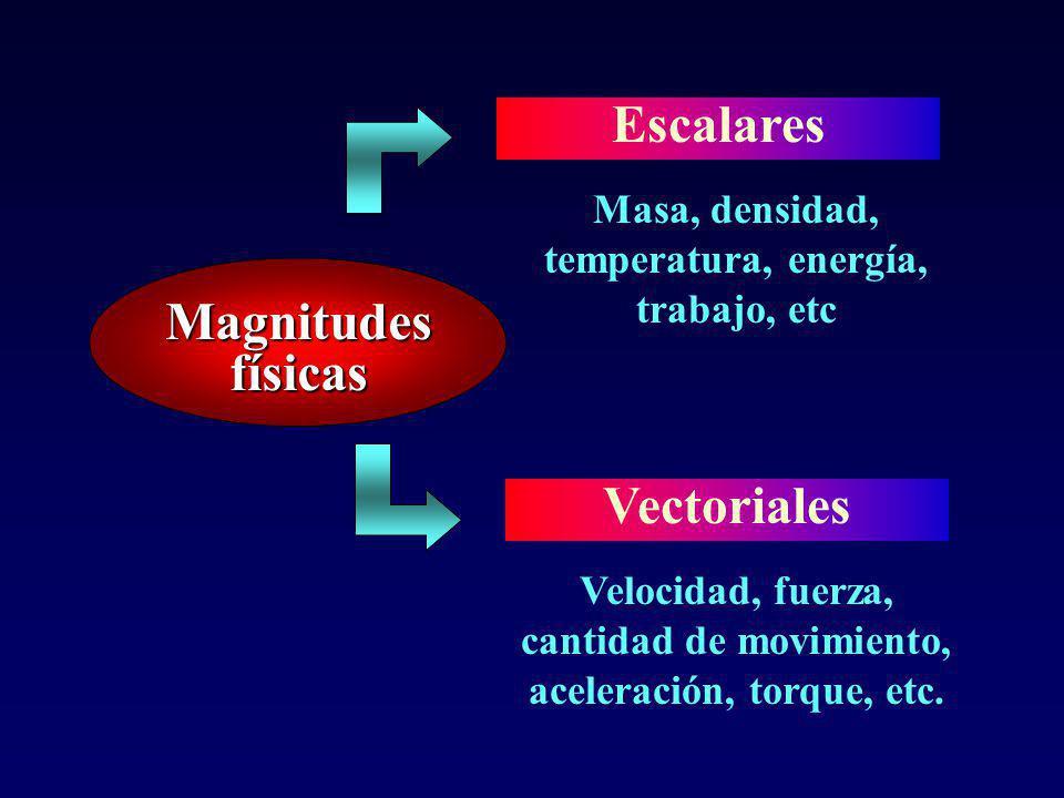 Magnitudes físicas Escalares Vectoriales Asociadas a propiedades que pueden ser caracterizadas a través de una cantidad Asociadas a propiedades que se caracterizan no sólo por su cantidad sino por su dirección y su sentido