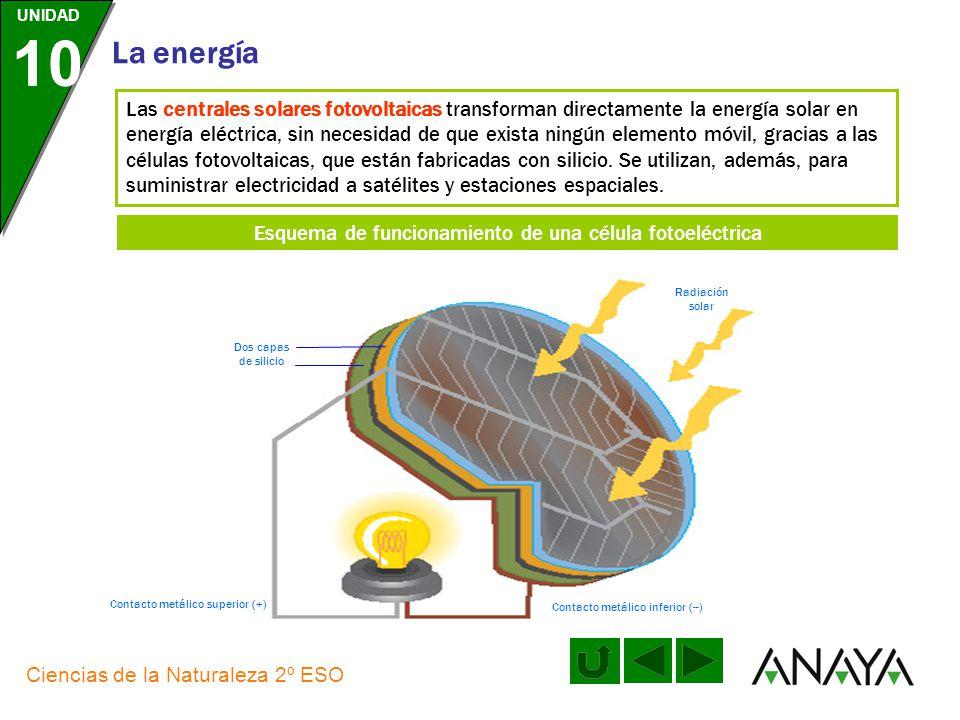 UNIDAD 10 La energía Ciencias de la Naturaleza 2º ESO Las centrales solares térmicas constan de un campo de heliostatos, que es una gran superficie cu