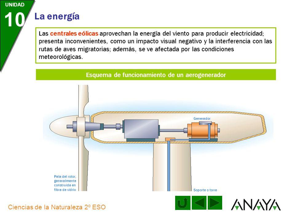 UNIDAD 10 La energía Ciencias de la Naturaleza 2º ESO Las centrales solares fotovoltaicas transforman directamente la energía solar en energía eléctri