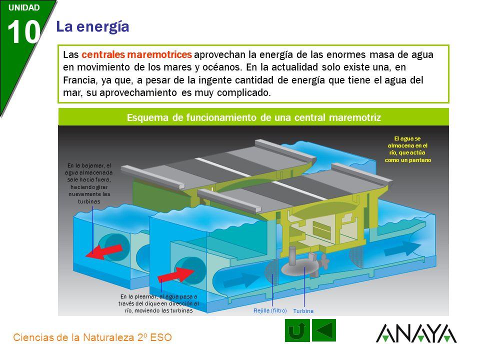 UNIDAD 10 La energía Ciencias de la Naturaleza 2º ESO Las centrales eólicas aprovechan la energía del viento para producir electricidad; presenta inco