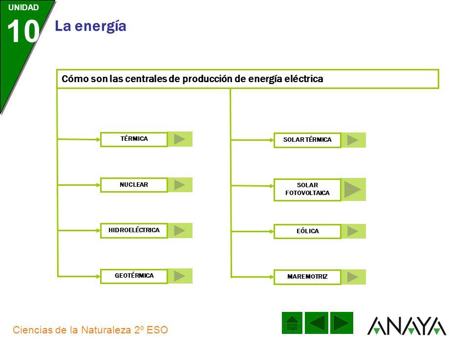 UNIDAD 10 La energía Ciencias de la Naturaleza 2º ESO Las fuentes de energía primaria, renovables y no renovables, se aprovechan para producir energía