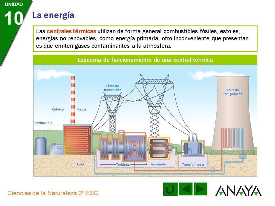 UNIDAD 10 La energía Ciencias de la Naturaleza 2º ESO Cómo son las centrales de producción de energía eléctrica TÉRMICA NUCLEAR HIDROELÉCTRICA GEOTÉRM