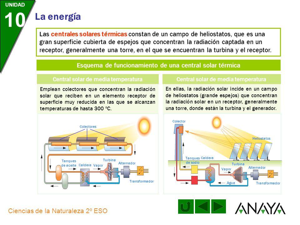 UNIDAD 10 La energía Ciencias de la Naturaleza 2º ESO Las centrales geotérmicas se pueden aprovechar, tan solo, en zonas donde las manifestaciones geo
