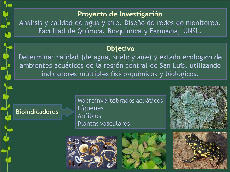 Macroinvertebrados acuáticos Líquenes Anfibios Plantas vasculares Proyecto de Investigación Análisis y calidad de agua y aire. Diseño de redes de moni