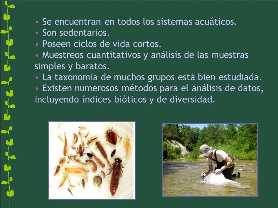 Se encuentran en todos los sistemas acuáticos. Son sedentarios. Poseen ciclos de vida cortos. Muestreos cuantitativos y análisis de las muestras simpl