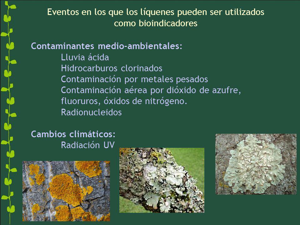 Contaminantes medio-ambientales: Lluvia ácida Hidrocarburos clorinados Contaminación por metales pesados Contaminación aérea por dióxido de azufre, fl