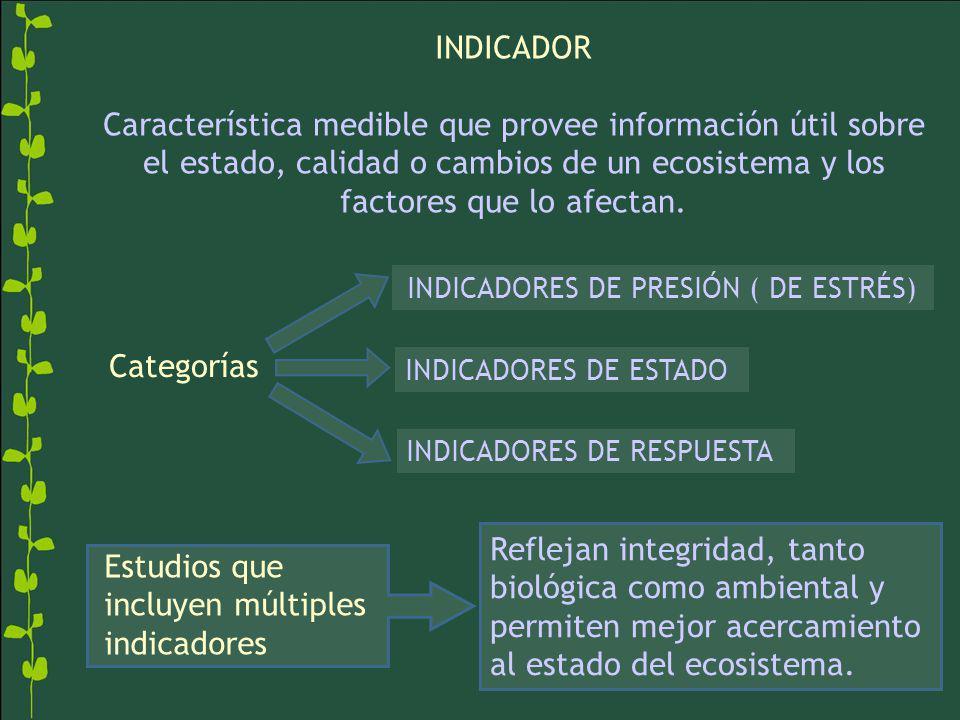 INDICADOR Característica medible que provee información útil sobre el estado, calidad o cambios de un ecosistema y los factores que lo afectan. INDICA