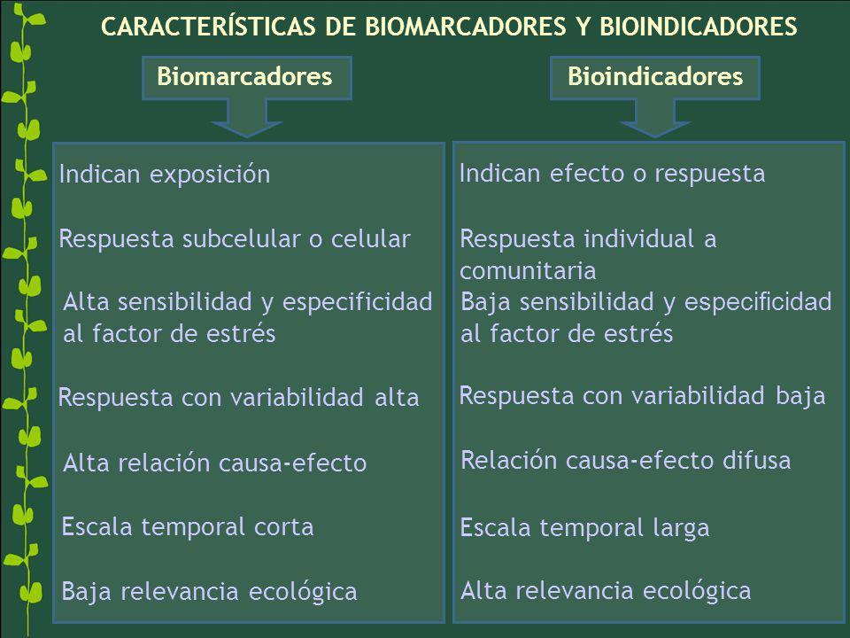 CARACTERÍSTICAS DE BIOMARCADORES Y BIOINDICADORES BiomarcadoresBioindicadores Indican exposición Indican efecto o respuesta Respuesta subcelular o cel