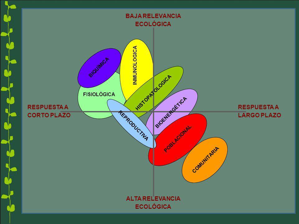RESPUESTA A LARGO PLAZO RESPUESTA A CORTO PLAZO BAJA RELEVANCIA ECOLÓGICA ALTA RELEVANCIA ECOLÓGICA COMUNITARIA POBLACIONAL INMUNOLOGICA FISIOLÓGICA B
