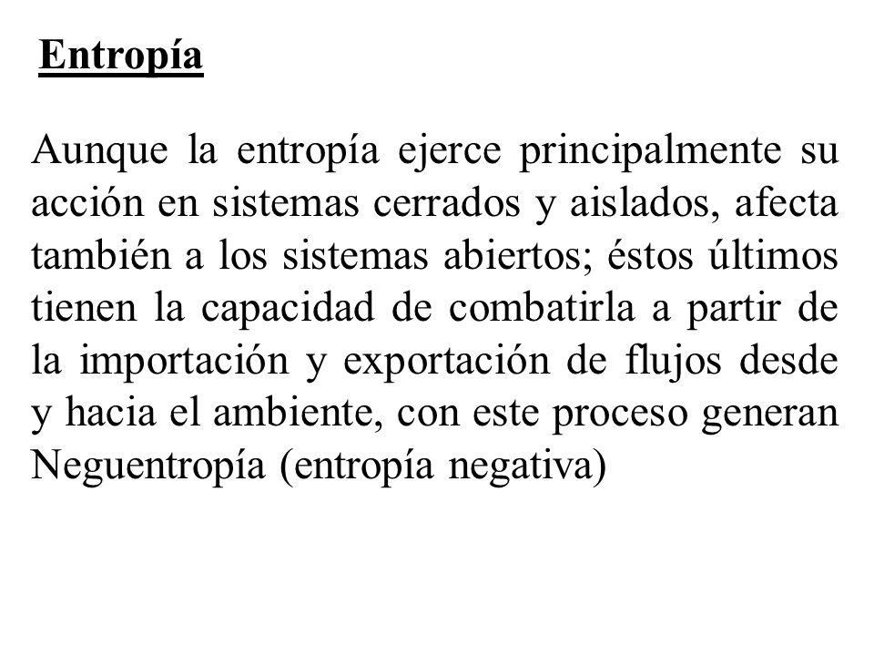 Aunque la entropía ejerce principalmente su acción en sistemas cerrados y aislados, afecta también a los sistemas abiertos; éstos últimos tienen la ca