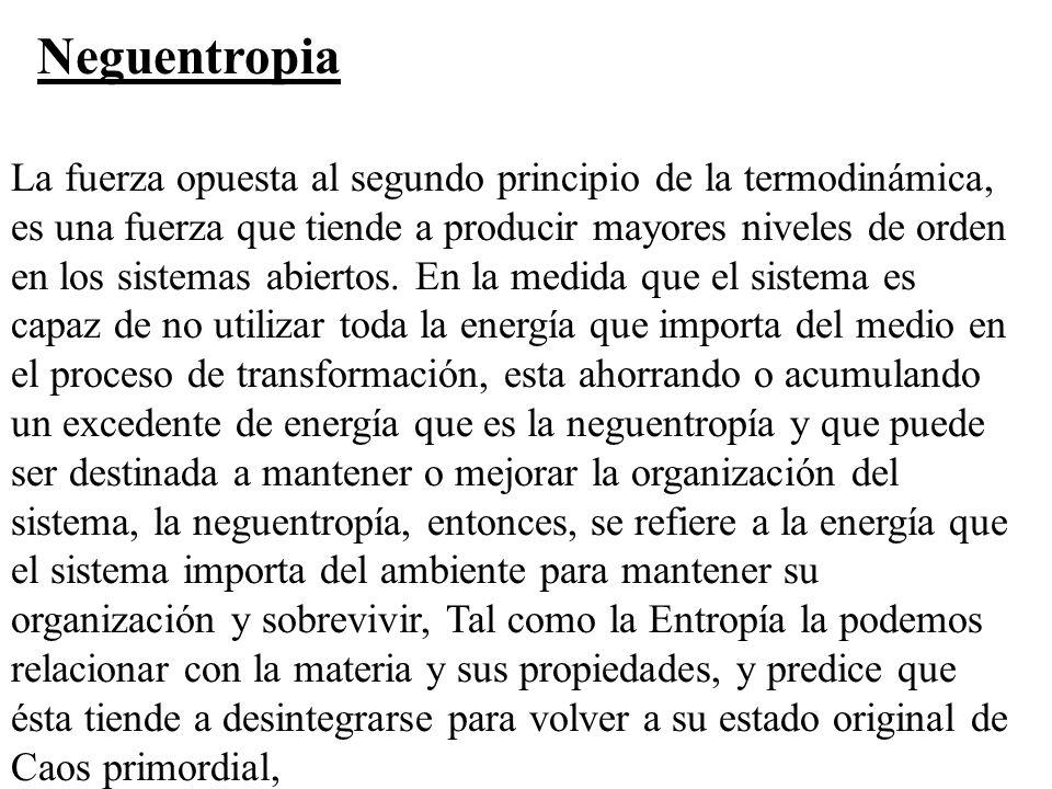 Neguentropia La fuerza opuesta al segundo principio de la termodinámica, es una fuerza que tiende a producir mayores niveles de orden en los sistemas