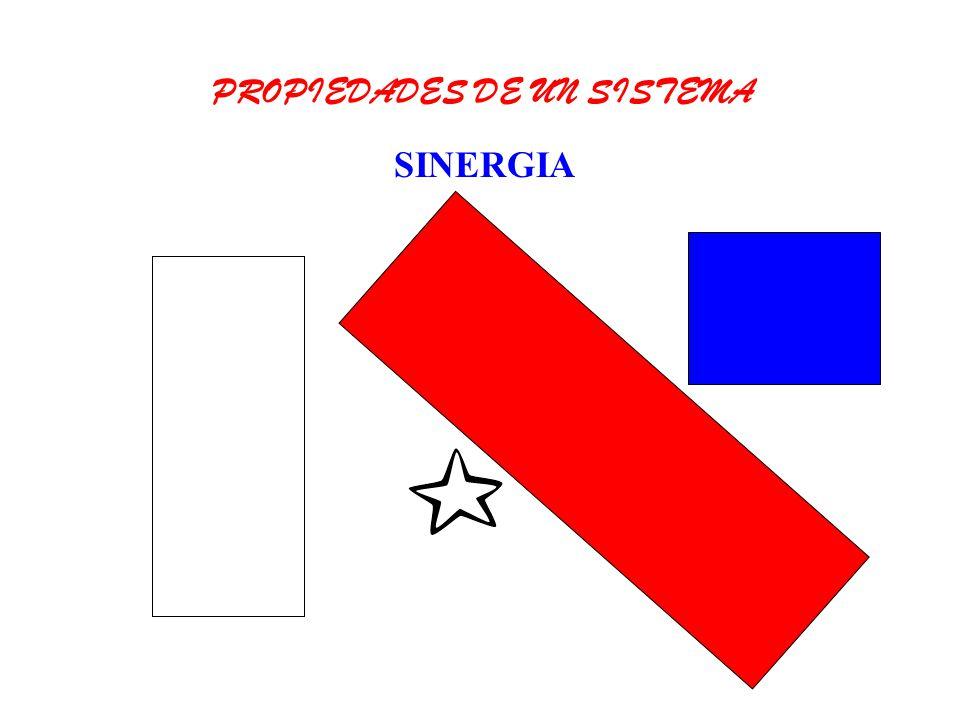 SINERGIA PROPIEDADES DE UN SISTEMA