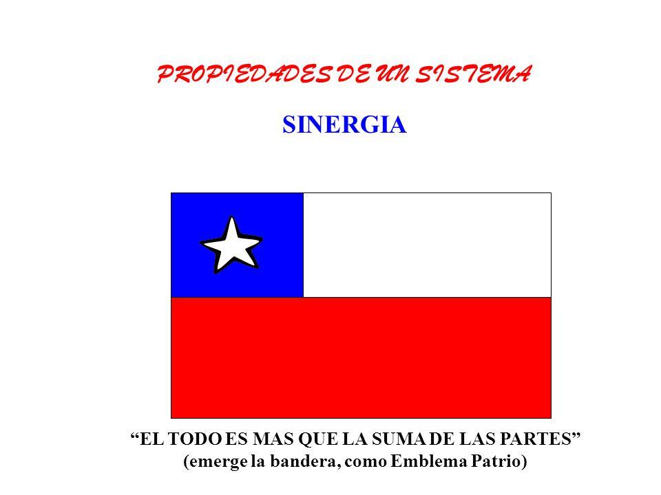 EL TODO ES MAS QUE LA SUMA DE LAS PARTES (emerge la bandera, como Emblema Patrio) PROPIEDADES DE UN SISTEMA SINERGIA