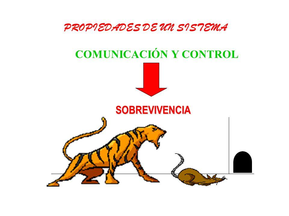 COMUNICACIÓN Y CONTROL PROPIEDADES DE UN SISTEMA SOBREVIVENCIA