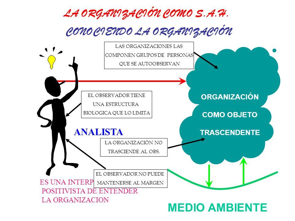 MEDIO AMBIENTE ORGANIZACIÓN COMO OBJETO TRASCENDENTE ANALISTA ES UNA INTERPRETACIÓN POSITIVISTA DE ENTENDER LA ORGANIZACION CONOCIENDO LA ORGANIZACIÓN