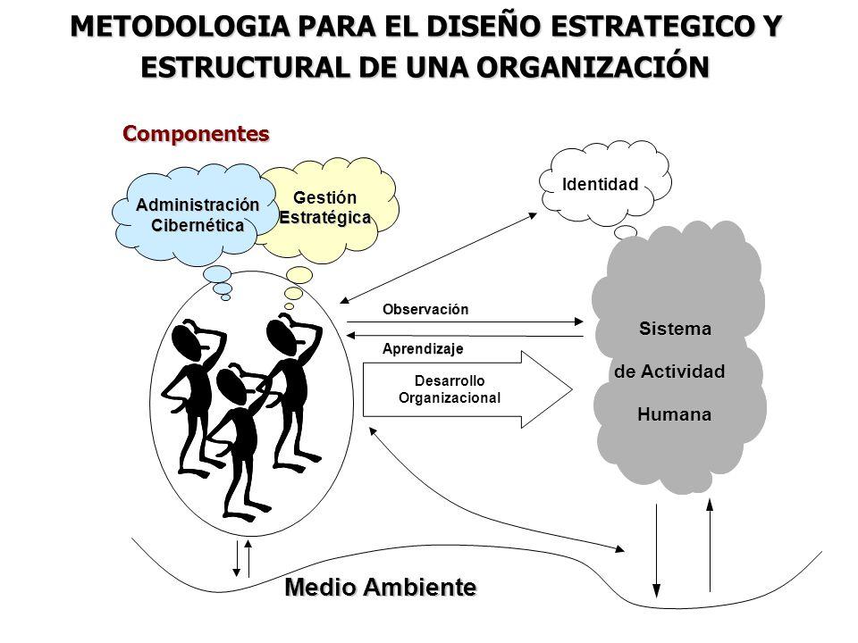 METODOLOGIA PARA EL DISEÑO ESTRATEGICO Y ESTRUCTURAL DE UNA ORGANIZACIÓN Componentes Medio Ambiente Desarrollo Organizacional Observación Aprendizaje