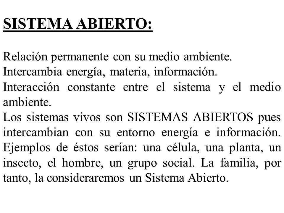 SISTEMA ABIERTO: Relación permanente con su medio ambiente. Intercambia energía, materia, información. Interacción constante entre el sistema y el med