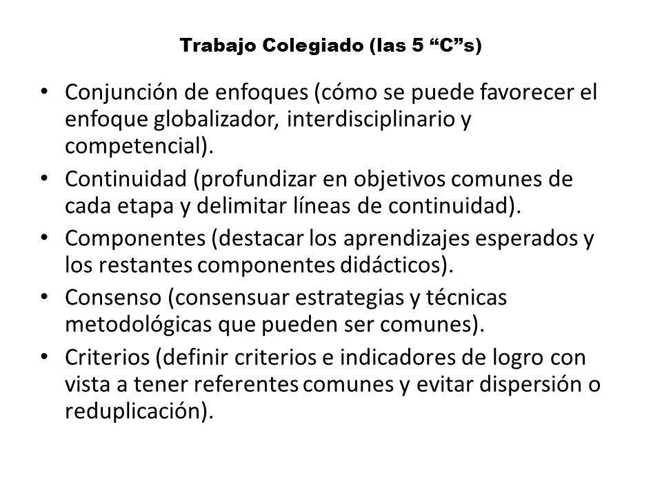 Trabajo Colegiado (las 5 Cs) Conjunción de enfoques (cómo se puede favorecer el enfoque globalizador, interdisciplinario y competencial). Continuidad