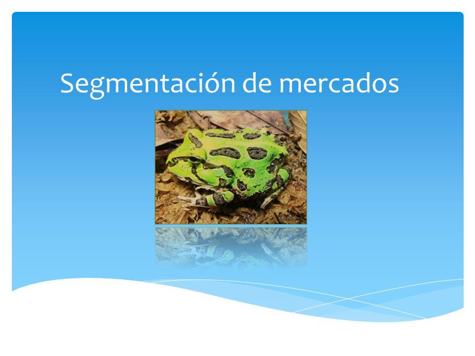 Segmentación Psicográfica Las variables psicográficas son de mayor utilidad en la plantación estratégica porque permite orientar las acciones de marketing hacia los individuos que conforman el mercado meta.