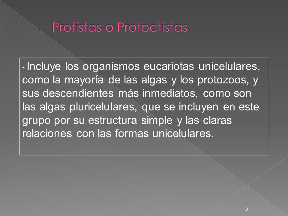 2 Incluye los organismos eucariotas unicelulares, como la mayoría de las algas y los protozoos, y sus descendientes más inmediatos, como son las algas