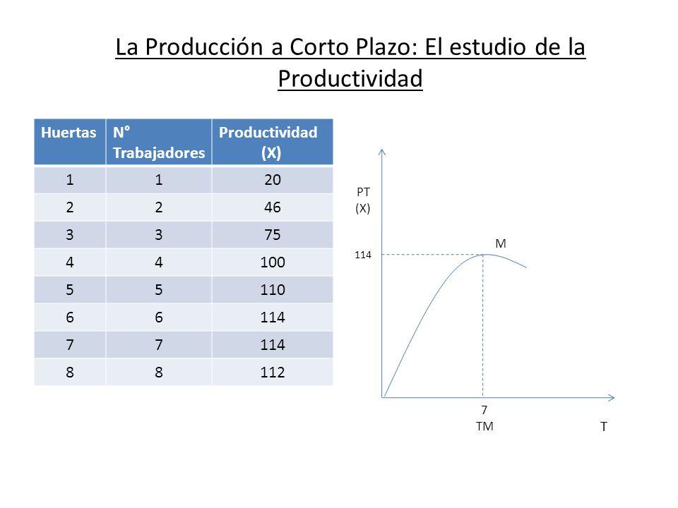 La Producción a Corto Plazo: El estudio de la Productividad HuertasN° Trabajadores Productividad (X) 1120 2246 3375 44100 55110 66114 77 88112 PT (X)