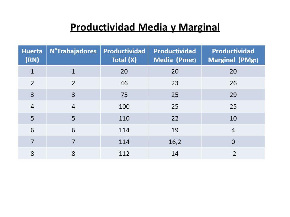 Productividad Media y Marginal Huerta (RN) N°TrabajadoresProductividad Total (X) Productividad Media (Pme t) Productividad Marginal (PMg t) 1120 22462