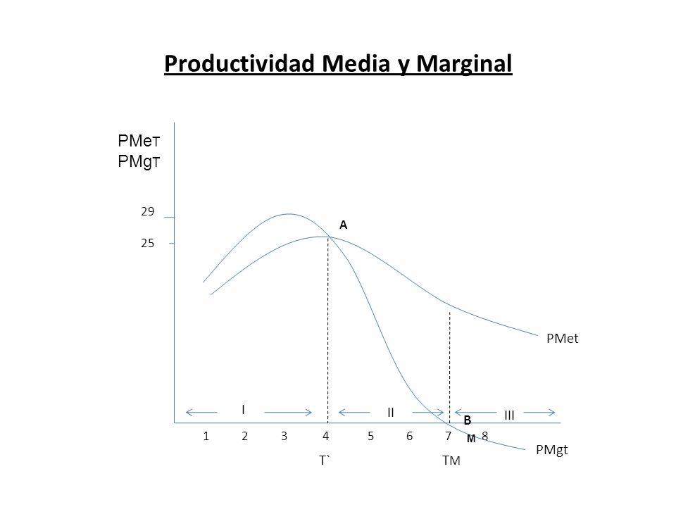 Productividad Media y Marginal PMe T PMg T 29 25 1 2 3 4 5 6 7 8 PMet PMgt A B I II III T`TMTM M