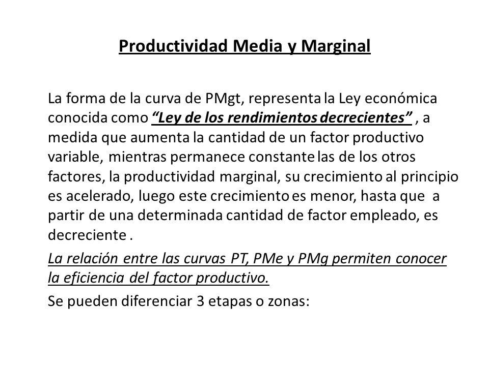 Productividad Media y Marginal La forma de la curva de PMgt, representa la Ley económica conocida como Ley de los rendimientos decrecientes, a medida