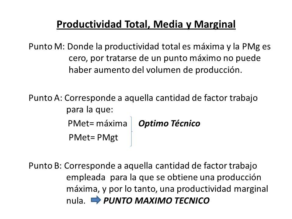 Productividad Total, Media y Marginal Punto M: Donde la productividad total es máxima y la PMg es cero, por tratarse de un punto máximo no puede haber