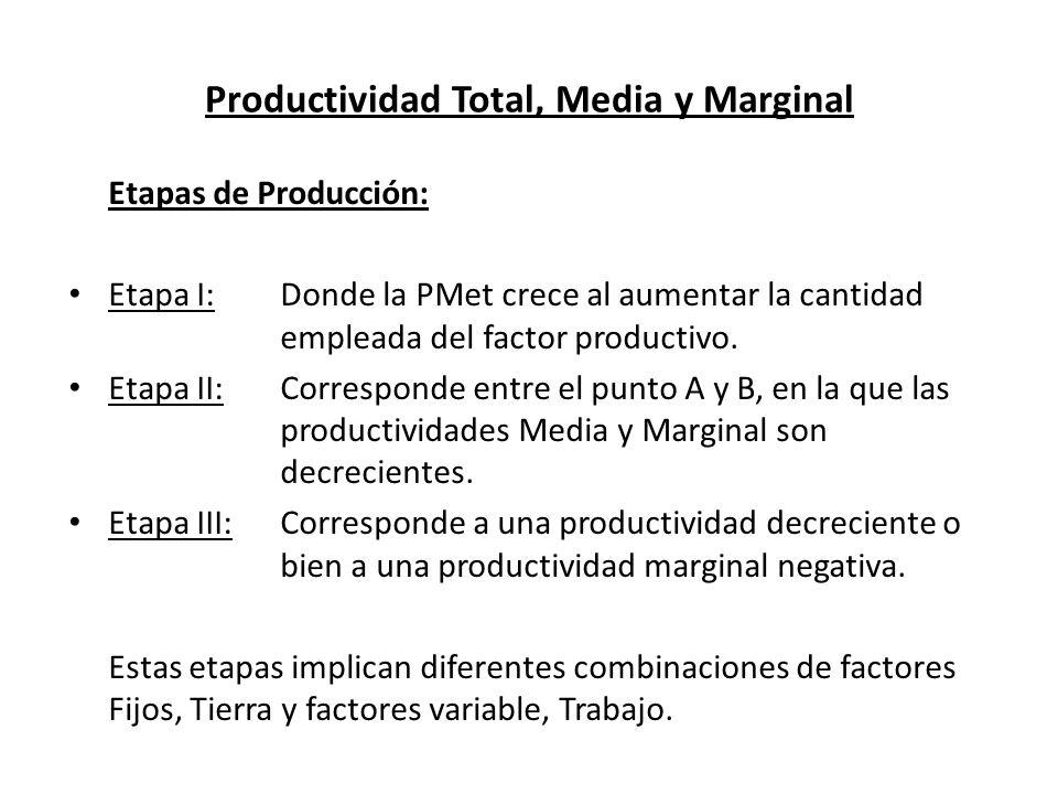 Productividad Total, Media y Marginal Etapas de Producción: Etapa I:Donde la PMet crece al aumentar la cantidad empleada del factor productivo. Etapa
