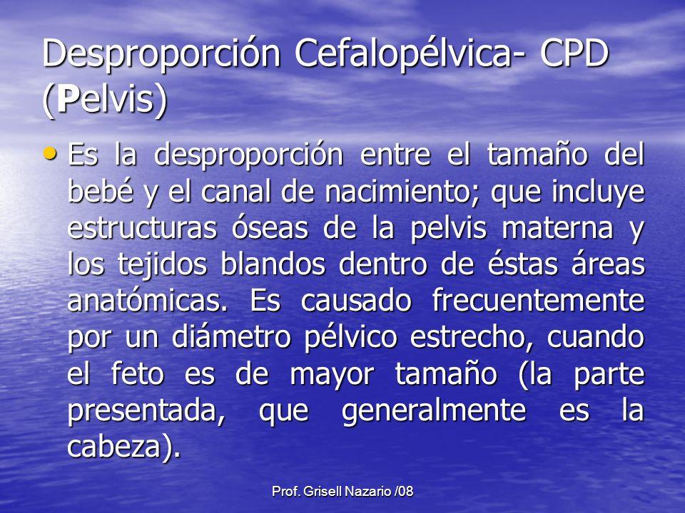 Prof. Grisell Nazario /08 Desproporción Cefalopélvica- CPD (Pelvis) Es la desproporción entre el tamaño del bebé y el canal de nacimiento; que incluye